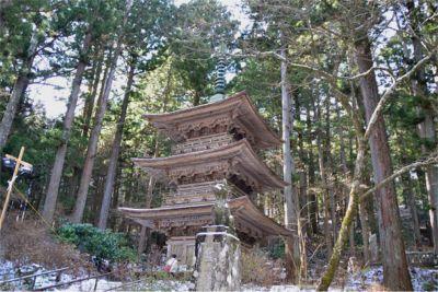 光前寺の早太郎