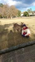 奈良公園にて(^-^)
