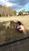 鹿と一緒に♪