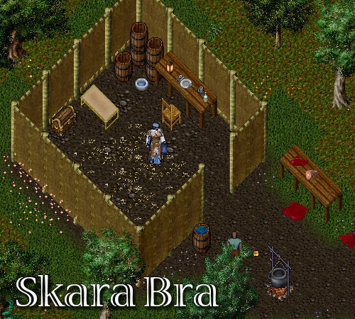 sumitai-B-Skara.jpg