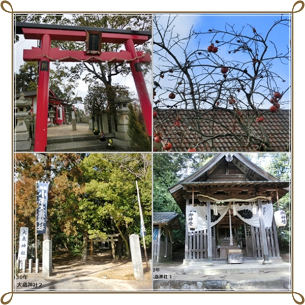 cats神社
