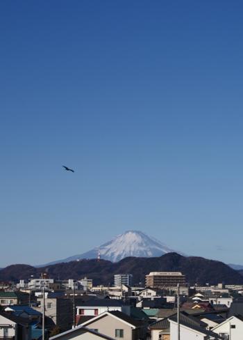 2018-01-03_8kufuji.jpg