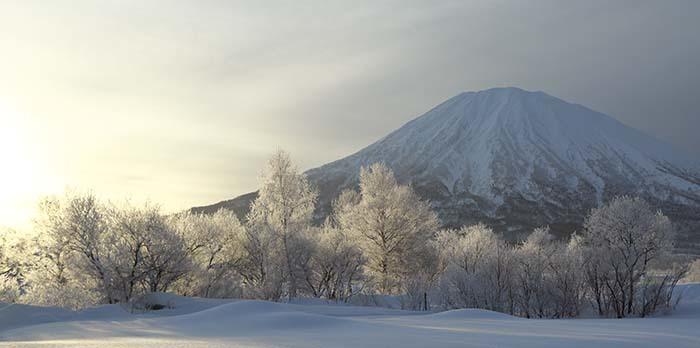 羊蹄山:雪の華