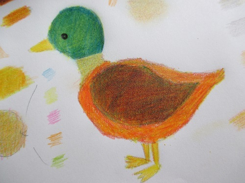 鳥イラスト練習2