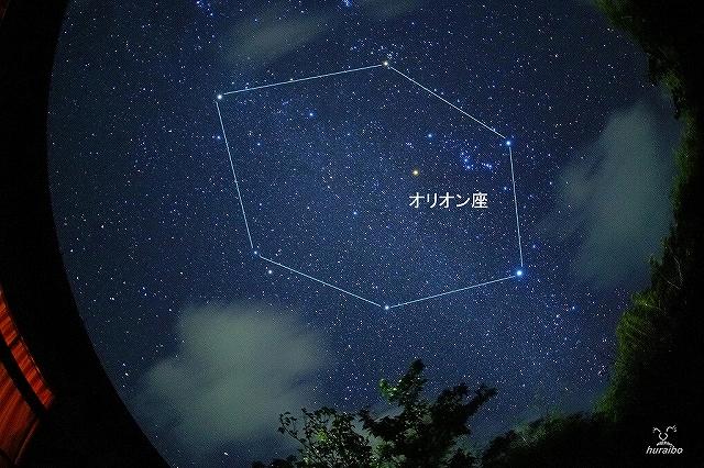 CQ-DSC07876-2.jpg