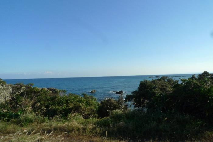 屋久島  31