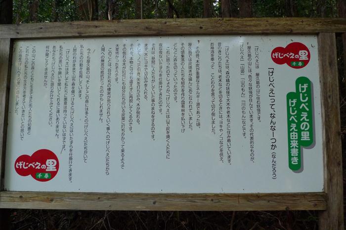 屋久島  96