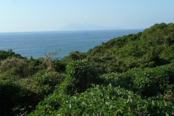 屋久島  102