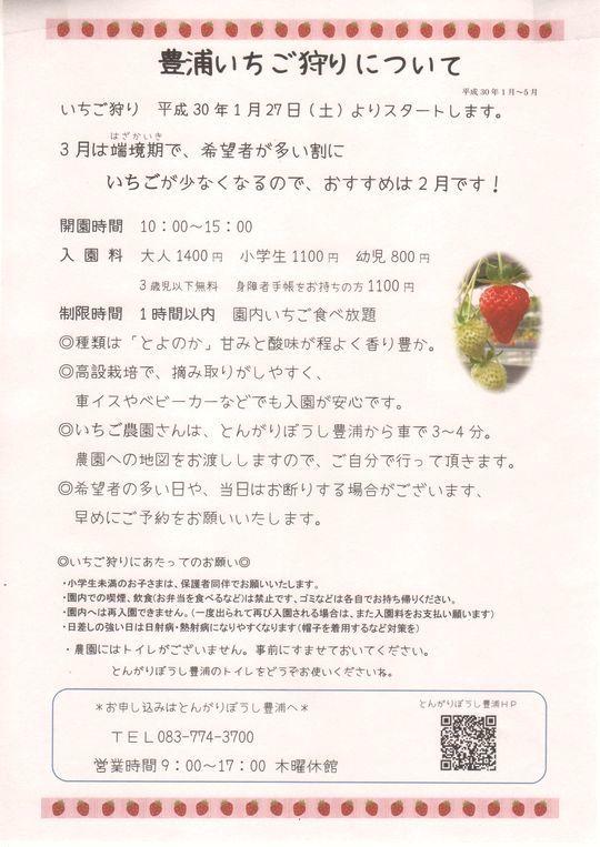 豊浦イチゴ狩り-2018 001