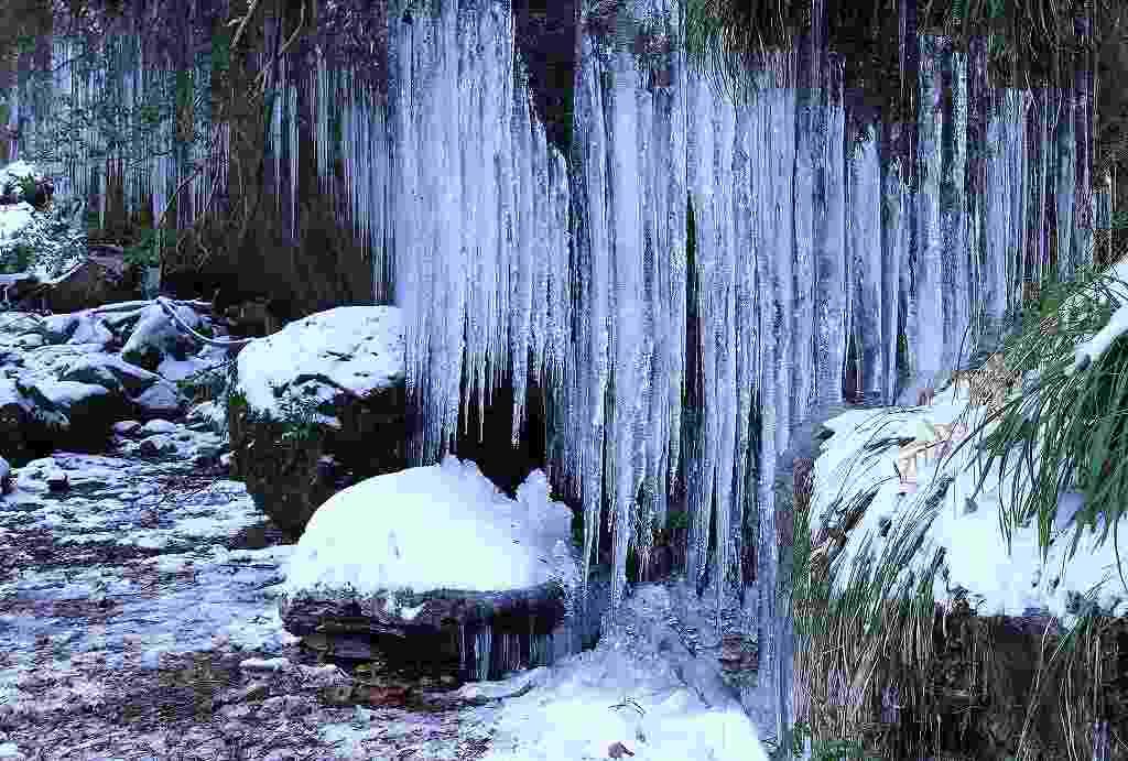 滑川渓谷氷柱2