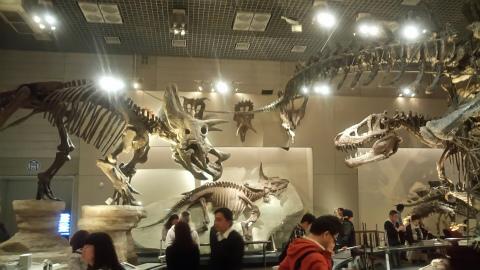 科学博物館5