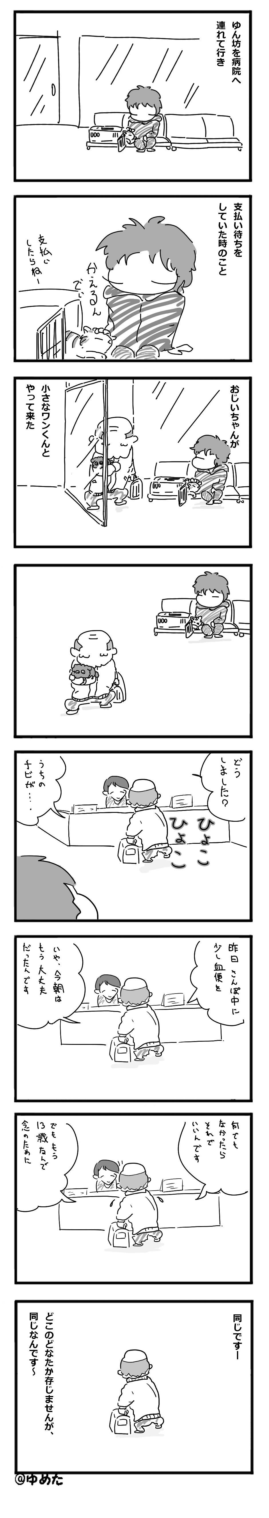 ミートゥー2-2-2