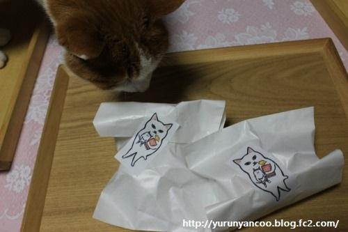 ブログNo.1153(ちよだ猫まつり2018に行ってきました♪)8