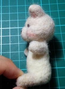 動物の赤ちゃんの作り方60