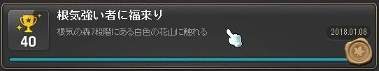 Maple_180131_210807.jpg