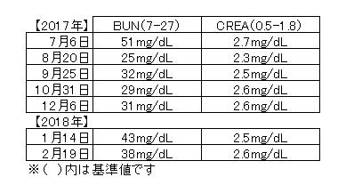 0219血液検査
