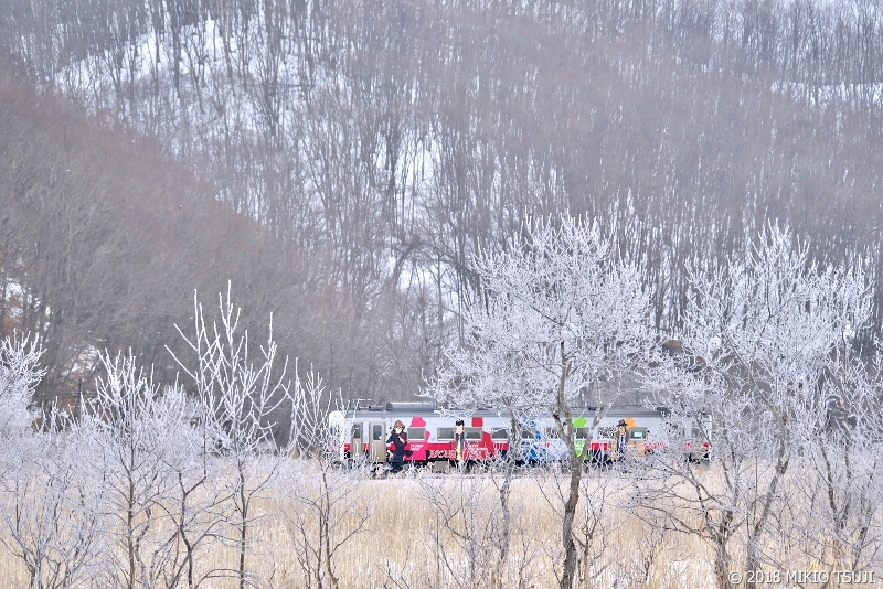 絶景探しの旅 - 0493 霧氷の雪原を行く 「ルパン三世ラッピングトレイン」 (北海道 標茶町)