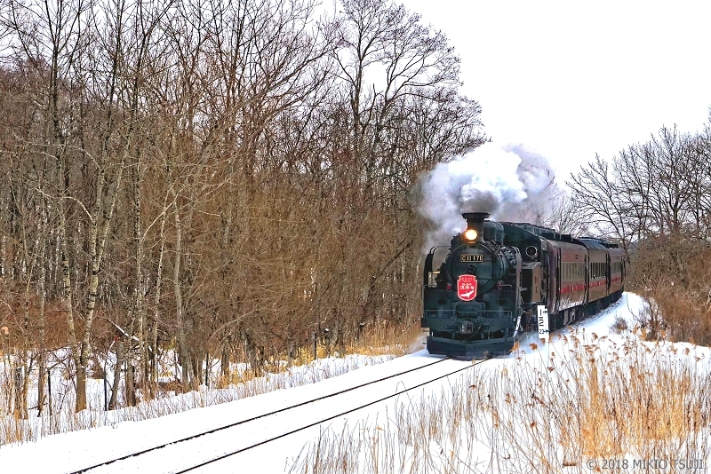 絶景探しの旅 - 0494 釧路湿原を駆け抜けるSL冬の湿原号 (北海道 標茶町)