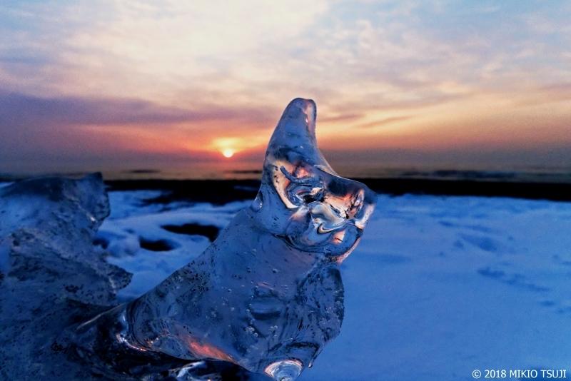 絶景探しの旅 - 0498 奇跡のクリスタルなワンコのジュエリーアイス (北海道 豊頃町)