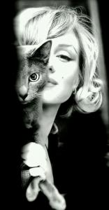 ec01c686a3d686c822c5d7f3d4554385--cat-people-cat-eyes.jpg