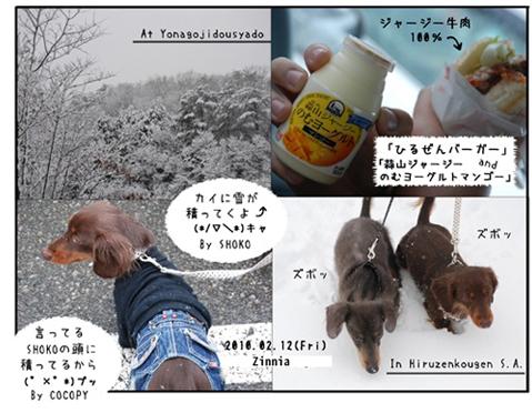 雪の思い出1