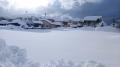 雄大な雪原